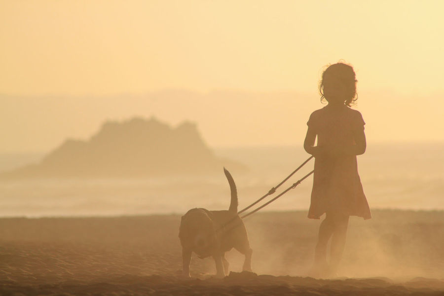 The dog and the girl Asturias Holiday SPAIN Beach Beauty In Nature Coast Dog Domestic Animals Dusty Leisure Activity Lifestyles Mammal Nature One Animal One Person Outdoors People Pets Real People Seaside Sky Spain ✈️🇪🇸 Sunset Vacation First Eyeem Photo The Week On EyeEm