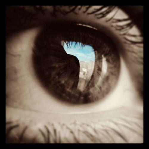 Macro Macro Photography Eye