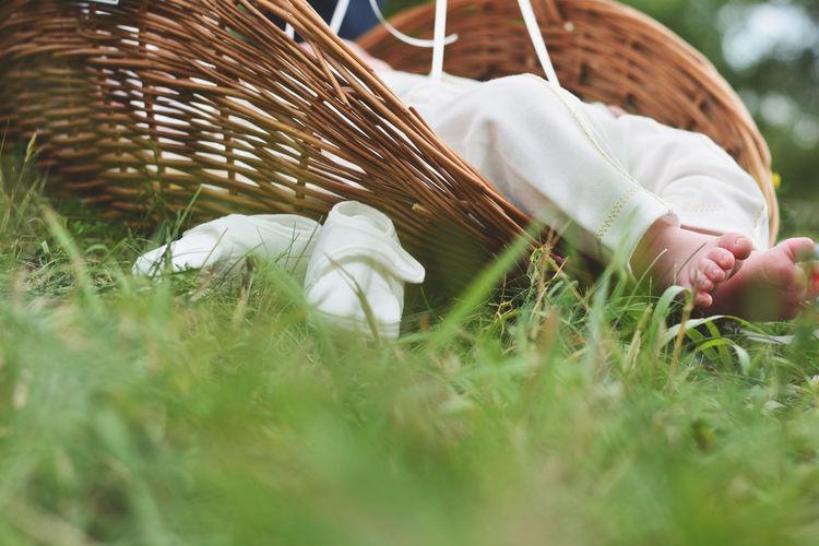Baby Fun Grass Green Human Body Part Newburn Outdoors Summer