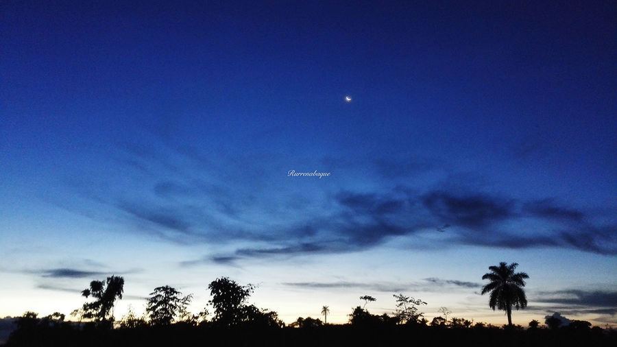 after one day's work, meet the new moon. Luna Neuvo Luna New Moon Moon Blue Sky Rurrenabaque Bolivia South America Amazonia Amazon Amazon River No People Outdoors 新月 EyeEmNewHere EyeEm New Here Phonegraphy Phone Photography Huaweiphotography PhonePhotography Phoneonly