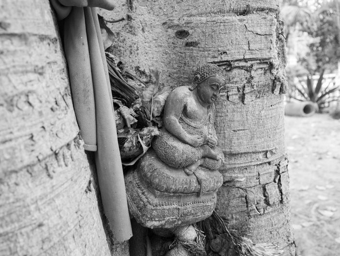 Buddha Temple Culture Thai Religion And Tradition Thailand Thailand Photos Traditional Culture Culture Culture And Tradition Identity Religion Temple Temple - Building Temple In Thailand Temple Thailand Thailand_allshots Traditional Wat Thai