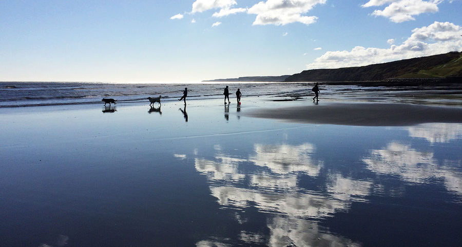 Saturday morning, 10am Silhouette Beach Family Dog Sea Seaside Fun Reflection Water Reflections