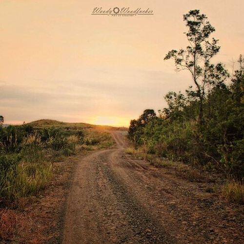 "Jarak itu cuma jeda antara keberadaan kamu dan aku. Seperti spasi antara kata ""kamu aku"". Jangan takut, Sayang.... _______________________________________________ Visitkalsel SouthBorneoTravellers Iamacreativ Thecreativmovement Travel Adventure HDR Sunset Road Path Quote"