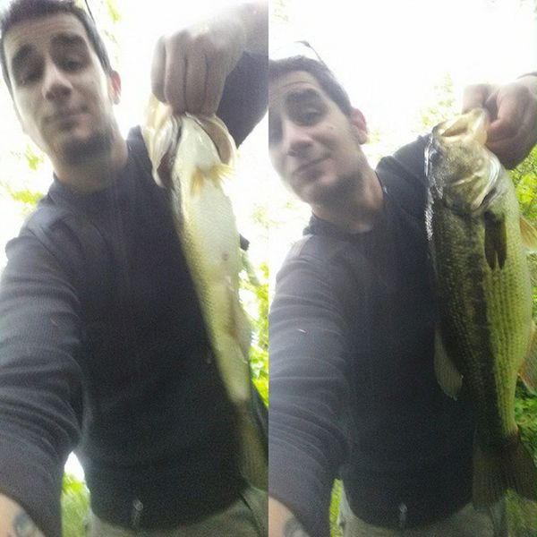 Got this guy on the first cast, in the rain a couple days ago. Largemouth Largemouthbass Bass Bassfishing Catchandrelease Hooked HOG Massbassboys Massachusetts Newengland Color Grey Lake Fishing Freshwater Rippinlips Quantum Senko Fatty Smash  Gotem Bassbrigade Bigbassdreams Outdoors Nature beautiful fisherman