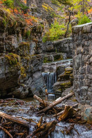 Glacier National Park Landscape Nature Waterfall Stream Glacier National Park Autumn Leaves Trees Water