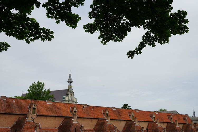 Tree Architecture Built Structure Building Exterior Place Of Worship Religion No People Day Sky Outdoors Roof Branch Tiled Roof  Nature City Daylight SONY A7ii Architectural Pitoresque Beguinage Brick Building House EyeEm Gallery Vintage Landscape