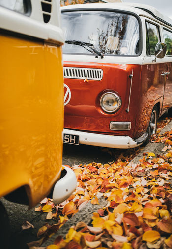 Close-up of yellow autumn leaves on car
