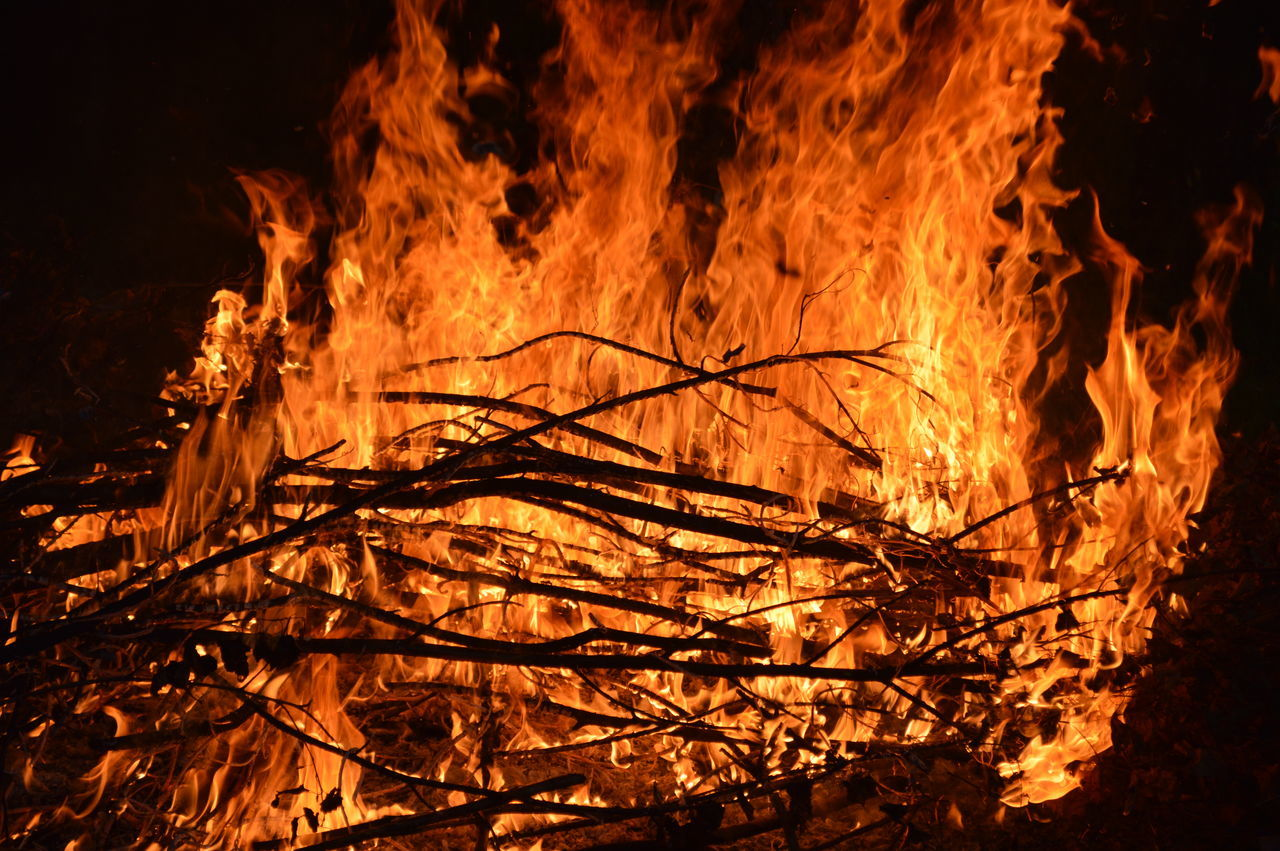 fire - natural phenomenon, burning, flame, heat - temperature, glowing, night, bonfire, outdoors, no people, close-up, tree