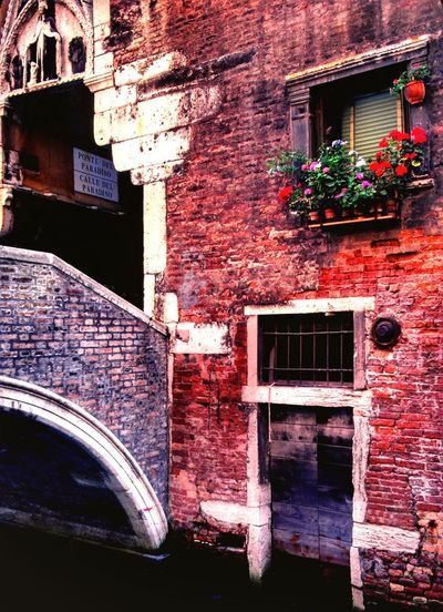 Venezia1979 Venezia Italia Building Exterior Architecture Window Built Structure No People Red Outdoors Day Plant Flower