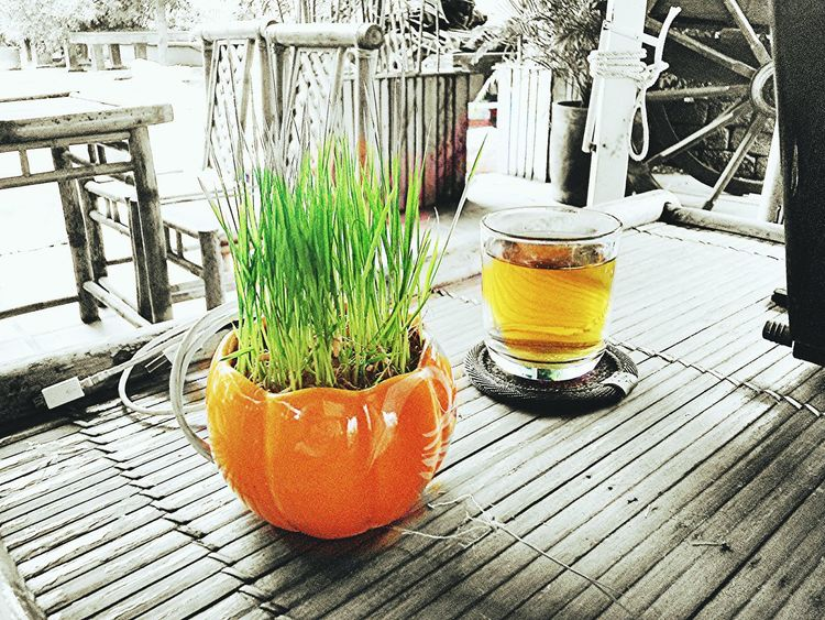 Relaxing Taking Photos Popular Photos Tea Time Enjoying Life Relaxing Bestmoment Sprouts Happy :) EyeEmBestPics