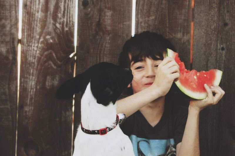 Boy eating watermelon against fence. Freshness Friends Dog Domestic Animals Looking At Camera Real People One Person Portrait Front View Holding Black Hair Lifestyles Casual Clothing Watermelon Food And Drink Smiling Freshness Happiness Day Fruit