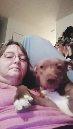 Lets take a selfie mawham. My Honey Bear Selfie Selfie With My Dog I Am A Pet Mom My Girl Honey Bear Pitbull Pitbull Lives Matter Live My Girl My Pibble Pet Photography