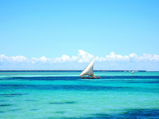 Zanzibar Tanzania Africa Sea Blue Horizon Over Water Water Sky Waterfront Tranquil Scene Sailboat Boat Beauty In Nature Nature Landscape Travel Destinations EyeEm Best Shots EyeEm EyeEm Nature Lover EyeEm Gallery EyeEmBestPics EyeEm Best Edits EyeEm Best Shots - Nature Nature EyeEm Masterclass The Great Outdoors - 2017 EyeEm Awards
