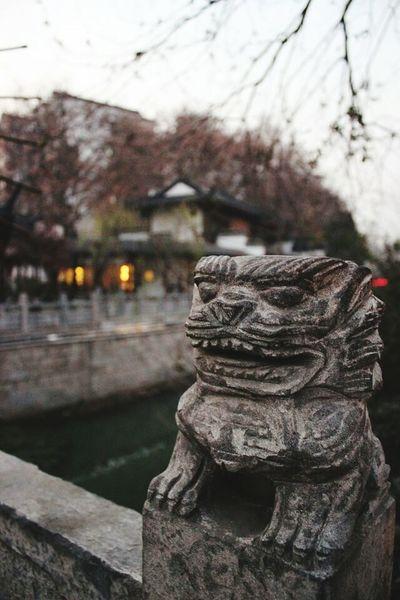 石桥小狮子 中国南京 EyeEm China View NANJING南京CHINA中国BEAUTY