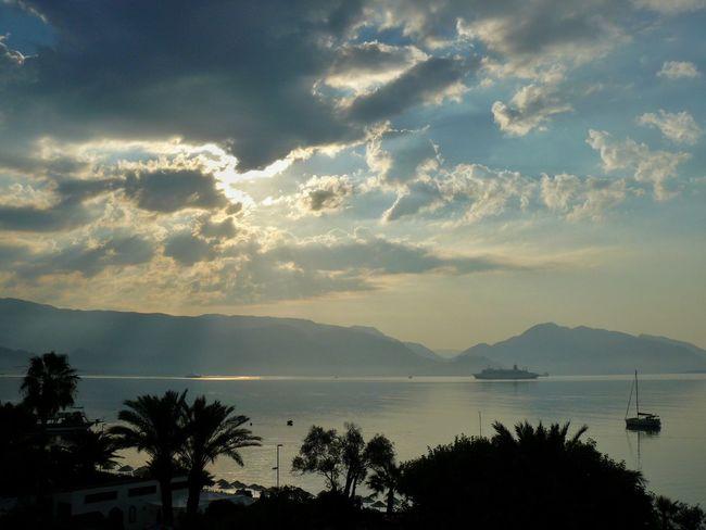 See Morning Tree Cloud - Sky Sky Mountain Palm Tree No People Nature