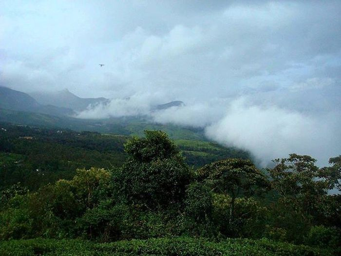 Fog or clouds still no idea, South India. India Southindia Clouds Fog Nature Mountains