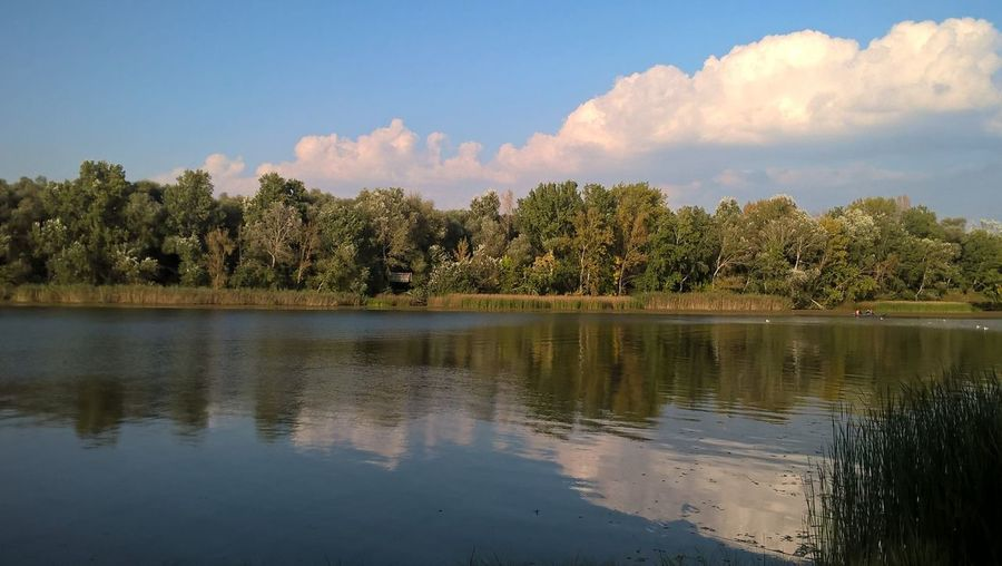 Day EyeEmNewHere Forest Lake Lake Tisza Landscape Nature Nature Reserve No People Outdoors Reflection Sky Tree Water