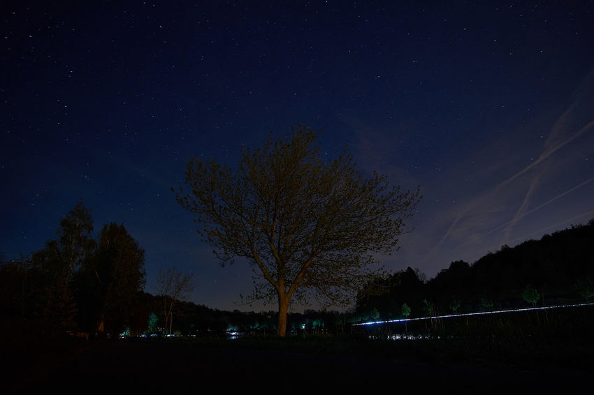 Night on river Moselle Astronomy Astrophotography Beauty In Nature Dark Galaxy Idyllic Illuminated Infinity Landscape Light Trails Long Exposure Longexposure Nature Night No People Scenics Sky Star - Space Star Field Tranquil Scene Tranquility Tree