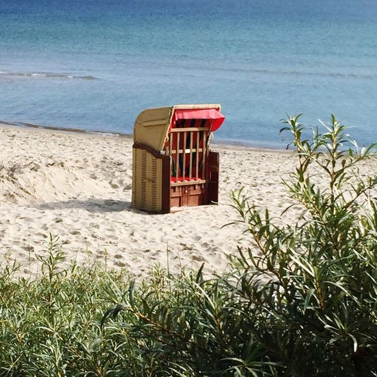 Beachchair sea buckthorn baltic sea summer beach Relaxing