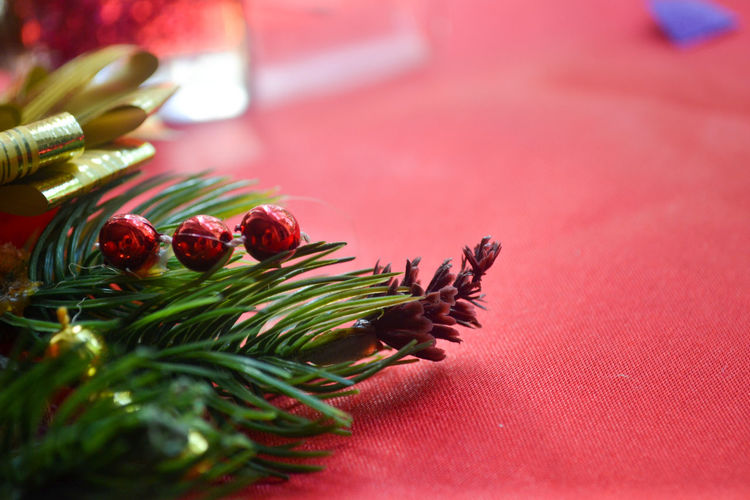 Branch of a christmas tree with a cone and decoration on a red background there is a place for text