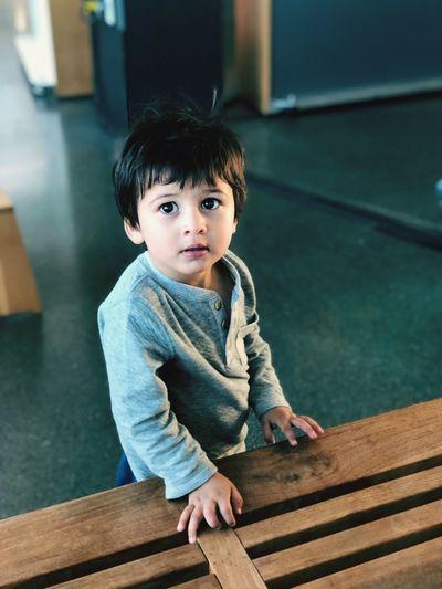 Portrait of cute boy sitting on wood