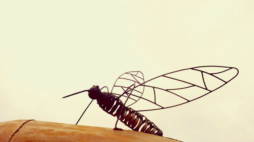 Art Metal No People The Mosquito Sculpture Sky