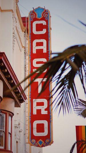 Castro Castro Theatre Castrotheatre San Francisco Sanfran Sanfrancisco Gay LGBTQ Rights Sun Sky Palm Colorful USA