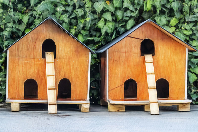 hut for cats in