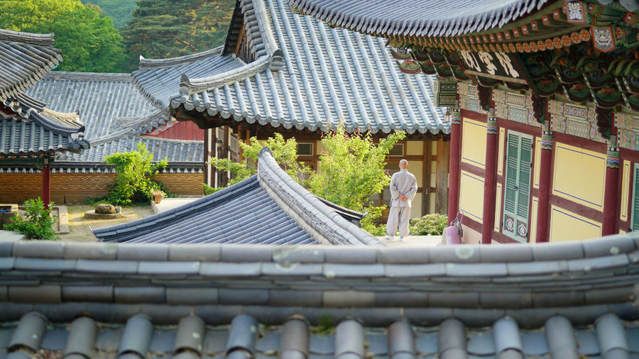 Architecture Roof Religion Building Exterior Built Structure Pagoda Travel Destinations Place Of Worship Spirituality Eaves Outdoors People Day One Person Adult 해인사 스님 여수스냅 광양스냅 순천스냅 Korea Hanguo