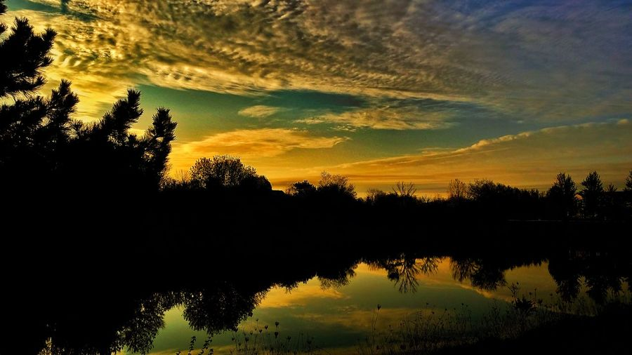 Reflection Sunset Tree Silhouette Cloud - Sky Lake Sky Water Tranquil Scene Scenics Nature Outdoors No People Tranquility Beauty In Nature Landscape Day Astronomy