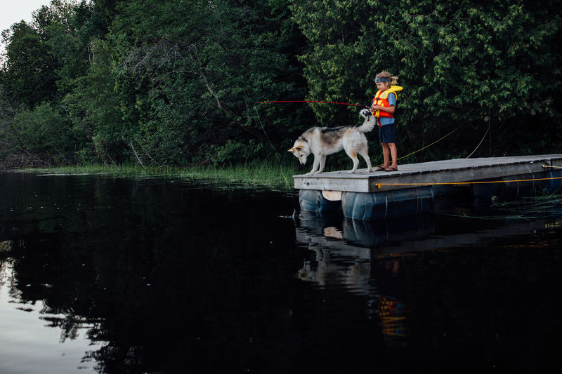 View of dog on lake