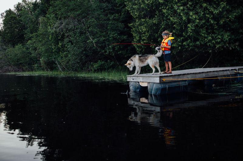 View of dog on lake