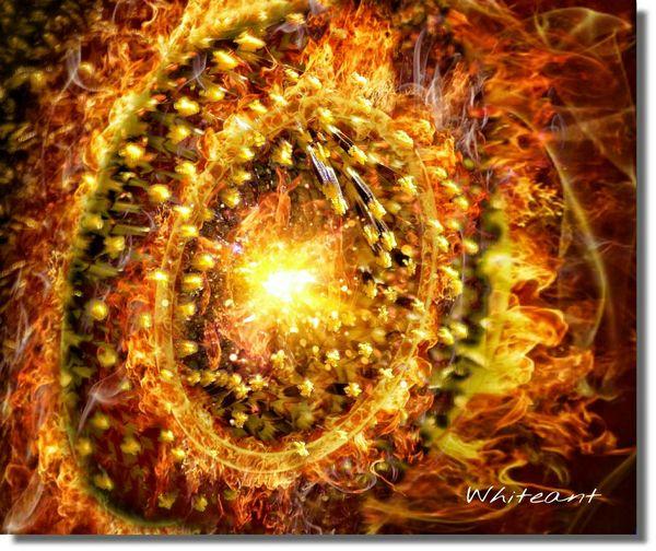 """SunFlower"" (My"