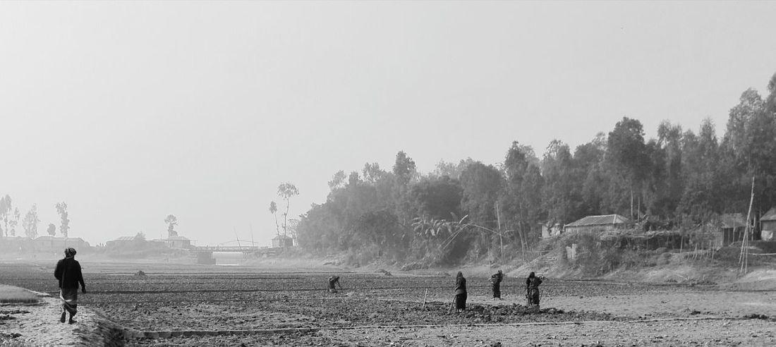 "Showcase: January Hello World Taking Photos Edit Photo "" Edit Photo "" Village Women Working In The Field . Struggle Women."