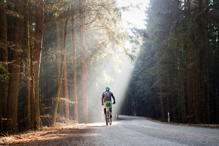 Rear View Of Man Cycling On Road In Forest