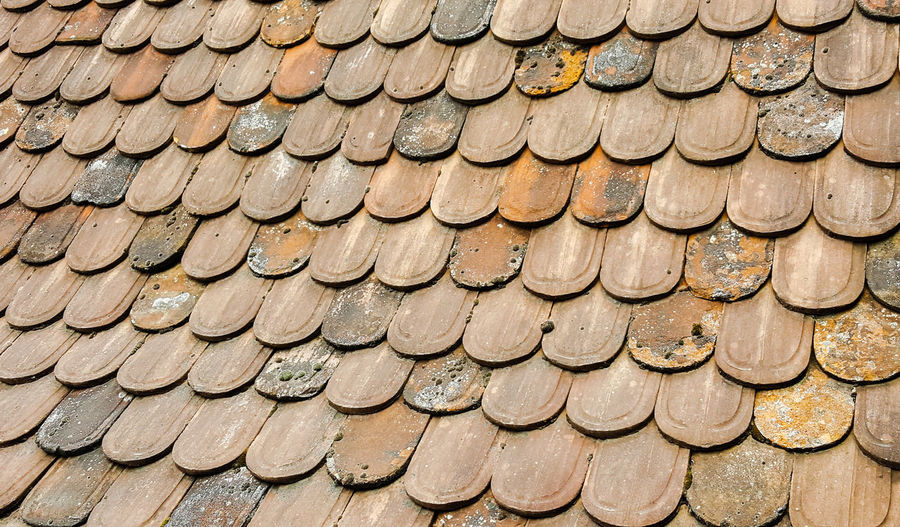 background textured wallpeper close-up outdoors Backgrounds Stack Full Frame Timber Pattern Arrangement Log Wood - Material Repetition Lumber Industry Woodpile Roof Tile Rooftop Roof Housing Settlement Textured  Country House