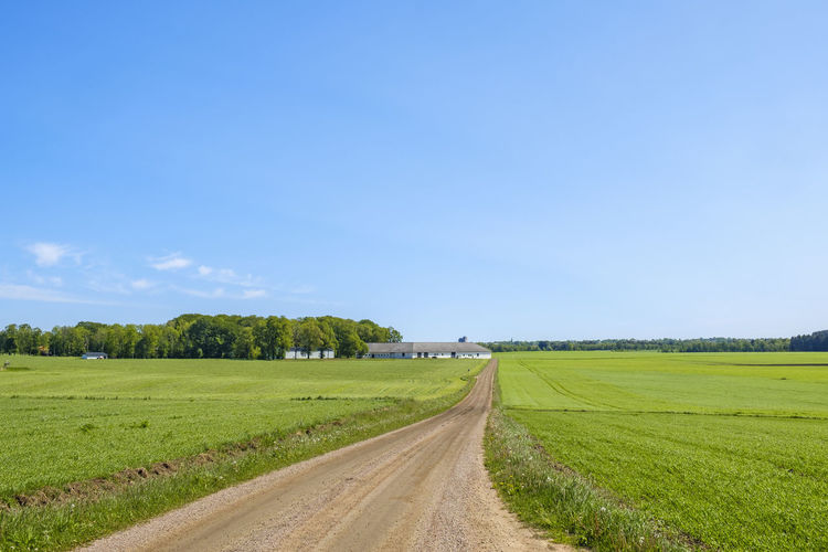 Long straight dirt road in a rural landscape with a farm