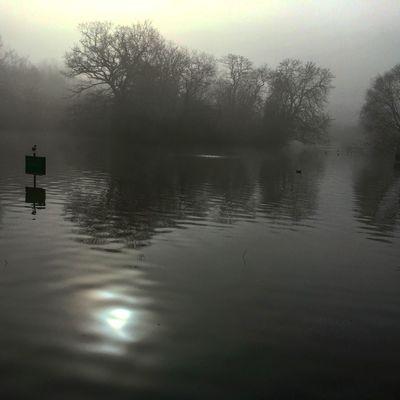 Morning Fog Foggy Morning