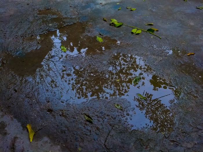 reflejo Matamoros Tamaultimas Tamaulipas Water Oil Spill Puddle Full Frame Reflection High Angle View Close-up