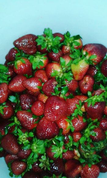 Check This Out Strawberries Foodgasm First Eyeem Photo Fruta♥ Fruits Strawberryful!