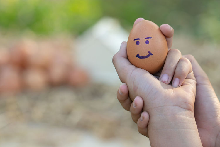 Cropped hands holding egg