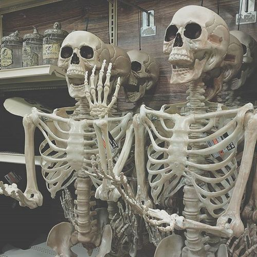 These guys are as happy to see me as I am to see them! Halloween2015 Bigsmiles Itishere Skeletons nexus6 outandabout ilovehalloween michaels smartphonephotography halloween247 sayhi takemehome