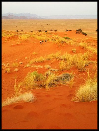 Namibia Desert Red Sands Magic Places Dunes Sossusvlei Desert - Namibia