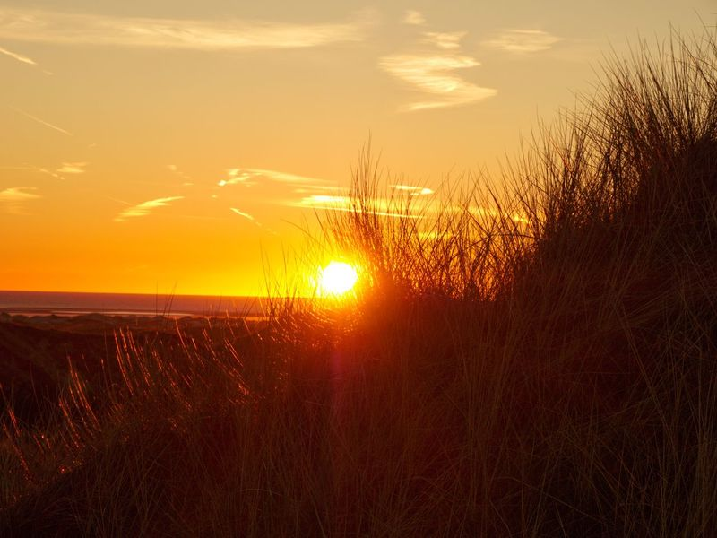 Sunset over Amrum Sunset Sun Nature Tranquil Scene Tranquility Growth Beauty In Nature