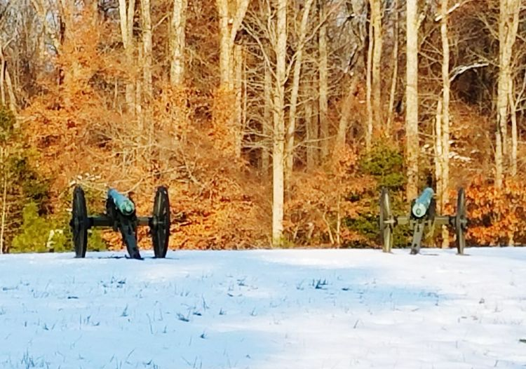 Civil War Canons Winter Snow Cold Temperature Tree Nature Outdoors Day Tree Trunk Beauty In Nature Bare Tree Forest No People Sky