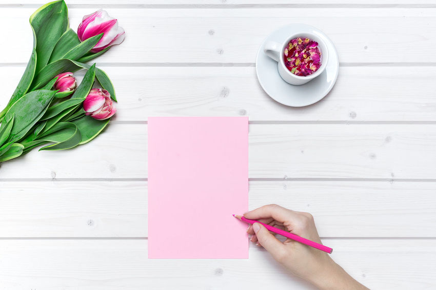 Tabletop scene with tulip flowers and a cup of tea with female hand writing on a pink paper Blank Paper Blank Paper On Table Directly Above Female Hand Female Hands Writing Flower Freshness High Angle View Human Body Part Human Hand Mockup Scene Paper Pink Color Pink Paper Real People Table Tabletop Scene Tulip Tulips Tulips Flowers View From Above Wedding Card Wedding Invitation
