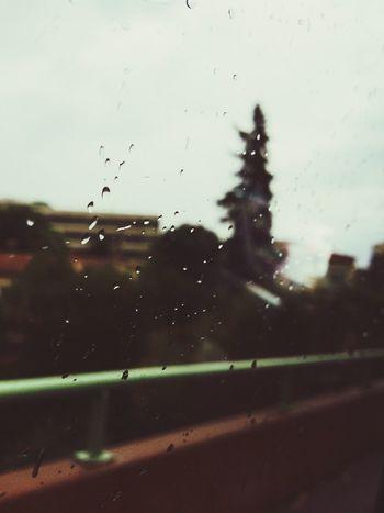 Streetphotography Rain