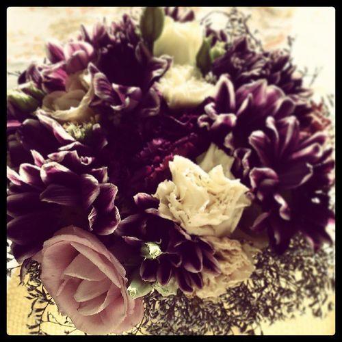 OxeyeDaisy <3 Oxeye Flower EyeEm Flower Engagement