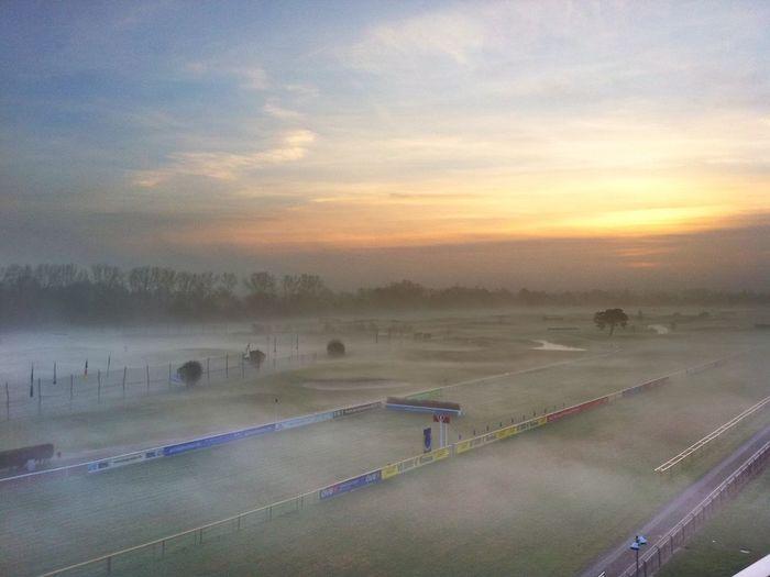 Foggy daylight