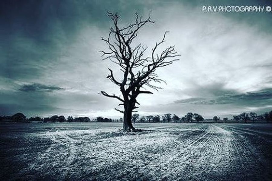 """""""Into the emptiness"""" Photography Instapic Landscape_lovers Landscape Landscapephotography Prvphotography"""